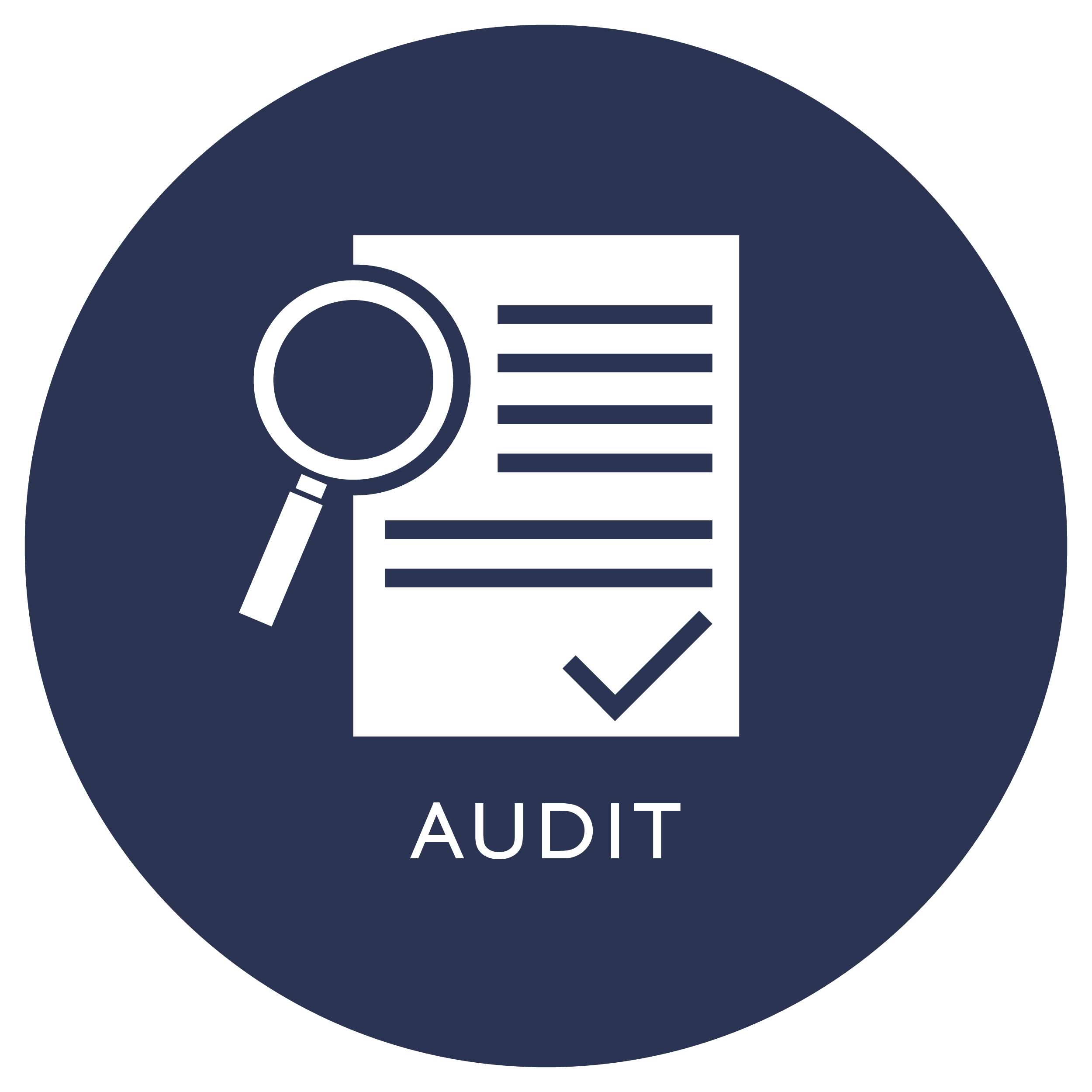 Audit-01 Opens in new window
